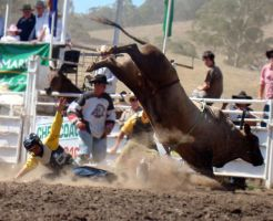 Rockley Rodeo 2 by engaged-vacancy