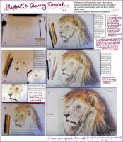 Colouring Tutorial by hapbuk