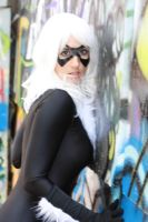 Black Cat 1 by cosplaynut