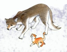 Disturbed wolf and lunatic cat by ratti1149