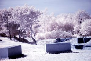 Infrared Forts by coog7444