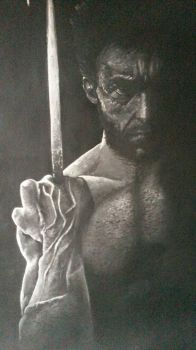 Wolverine  by ChrissiTime