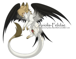 Aviolis-Felidae Adoptable .-CLOSED-. by Lova-Adopts