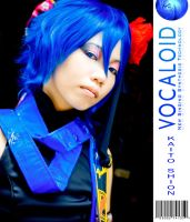 Vocaloid: Kaito by Animaidens