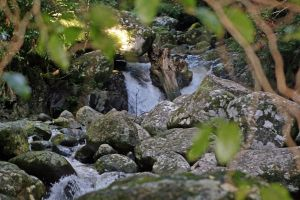 Stock 2750 - Waterfalls by LestatImage-Stock