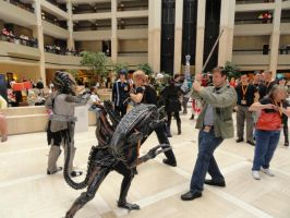 AWA 2014: Tag Team by NBCWerewolf