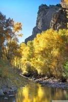 Canyon Gold by yenom