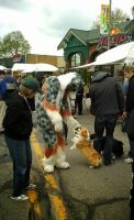 Meeting the Corgis: East Lansing art festival by Tychoaussie