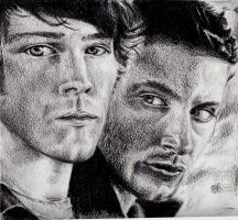 Sam and Dean by Fayerin