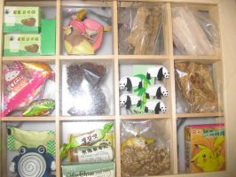 Chinese medicine box 2010 by beatrixxx