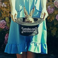 MY LITTLE RABBIT by cetrobo