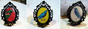 Framed Bird Rings by asunder