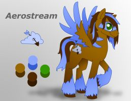 Aerostream Reference Sheet by DayDreamerPony