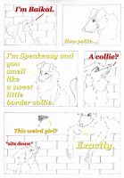 Baikal_RoundOne_Page37 by Paranoid-line