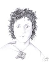 Frodo 2 by Nevuela