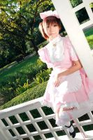 Meido - Sweet Pink by Xeno-Photography