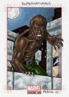 Werewolf by Night - Marvel Bronze Age by tonyperna