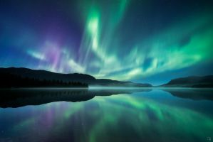 Waltz of the Polar Lights by Trichardsen