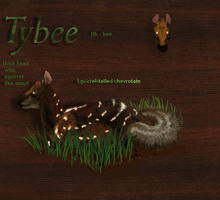 Tybee by CheeTree