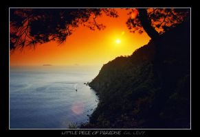 Little piece of Paradise by Gil-Levy
