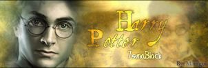Harry Potter by Mamgui