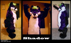Shadow by Grion