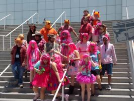 AX2014 - MLP Gathering: 26 by ARp-Photography