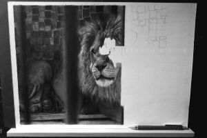 LION WIP 4 by stonedsour887