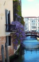 venice's canal by greentortoise