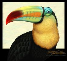 Toucan.TrueBlue.Szekeres by Jozef-Szekeres