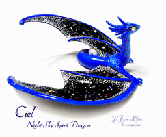 Ciel, Night Sky spirit dragon by rosepeonie