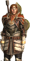 Dragon Age 2 Aveline render by micro5797