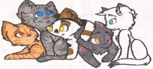Top 5 Favorite She-cats by NinjaMuffins1998