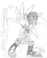 Silver drawing by SupaSilver