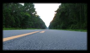 view from the middle of Hwy 98 by caycee