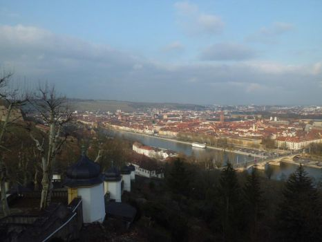 Wurzburg view by Alice097