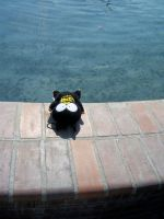 Ryoga  the Pig at Sac-Anime Summer 2012 by DearestLeader