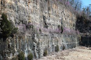 Blasted Rock Wall - Norris Dam by CrystalMarineGallery