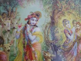 Gopis and Krishna by harydas