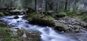 The Little Brook by atom7