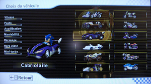Sonic In Mario Kart Wii ::2:: by Drakness-The-Fox