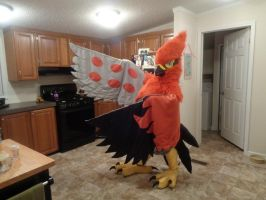 I IS A TALONFLAME!! by AmericanBlackSerpent