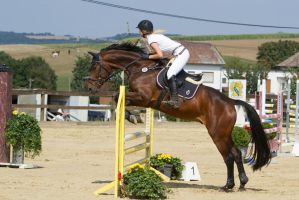 Level 5 Showjumping - L-Springen 55 by LuDa-Stock