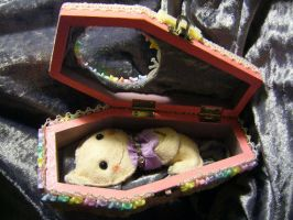 Coffin box with Ghost by tragicbat