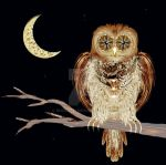Owl and Cresent by rockgem