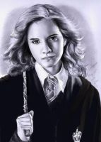 Hermione by Lisa-Superwholock