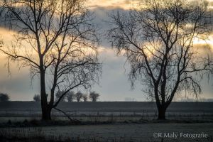 52 shades: no.38. First light by TLO-Photography