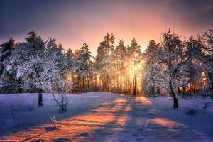 Winter Sunset by stg123