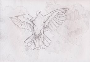 Dove tatto by prashy