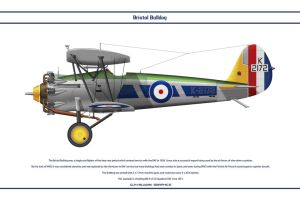 Bulldog GB 32 Sqn 3 by WS-Clave
